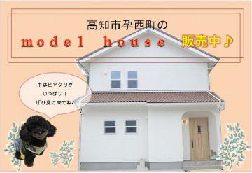 人気のモデルハウス販売中!見学会4/7(土)8(日)10:00~16:30